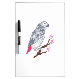 CONGO AFRICAN GREY PARROT Dry-Erase WHITEBOARDS