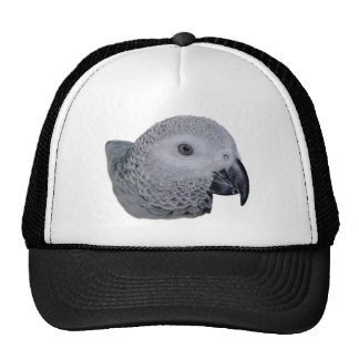 Congo African Grey parrot Hats