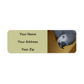 Congo African Grey Parrot Hello Label