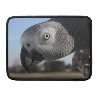 Congo African Grey Parrot Sleeve For MacBook Pro