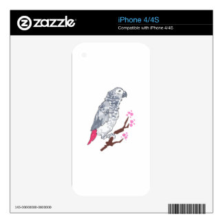CONGO AFRICAN GREY PARROT iPhone 4S SKINS