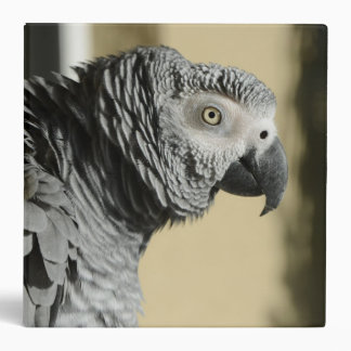 Congo African Grey Parrot with Ruffled Feathers Binder