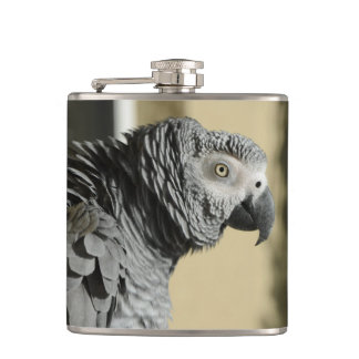 Congo African Grey Parrot with Ruffled Feathers Flask