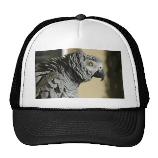 Congo African Grey Parrot with Ruffled Feathers Trucker Hat