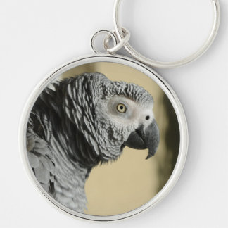 Congo African Grey Parrot with Ruffled Feathers Keychain