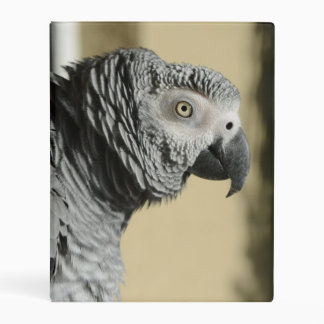 Congo African Grey Parrot with Ruffled Feathers Mini Binder
