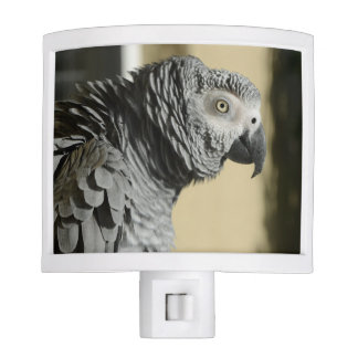 Congo African Grey Parrot with Ruffled Feathers Night Light