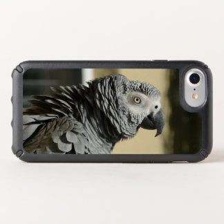 Congo African Grey Parrot with Ruffled Feathers Speck iPhone Case