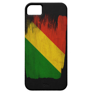 Congo Republic Flag iPhone SE/5/5s Case