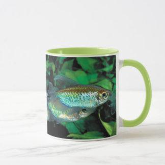 Congo tetra and Phenacogrammus interruptus Mug