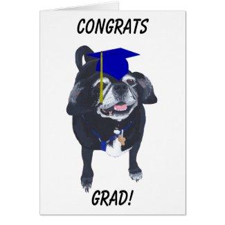 Congrats Grad Pug Dog Blue Cap and Tassel Cards