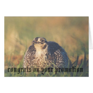 Congrats on your Promotion Card