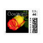 Congrats! Postage Stamp