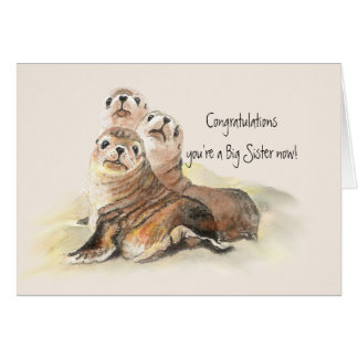 Congratulations Big Sister Humor Cute Seals Card