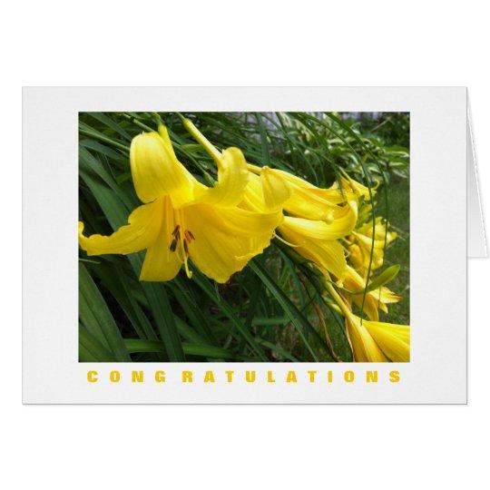 Congratulations Card: Daylilies, Yellow Card