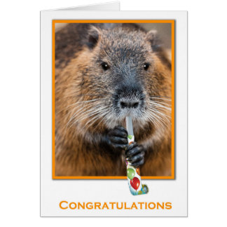 Congratulations card or beaver with flute