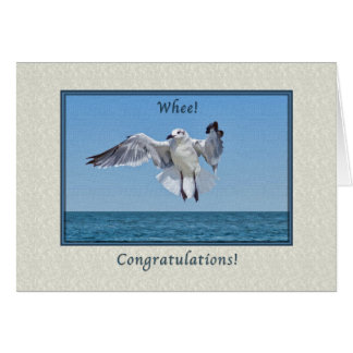 Congratulations Card with Laughing Gull