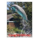 Congratulations Dolphin Card
