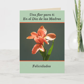 Congratulations for you in the Mother's Day Card