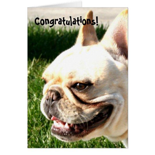 Congratulations French bulldog greeting card