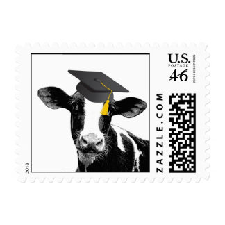 Congratulations Graduation Funny Cow in Cap Postage Stamps