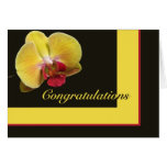 Congratulations Greeting Card - Yellow Moth Orchid
