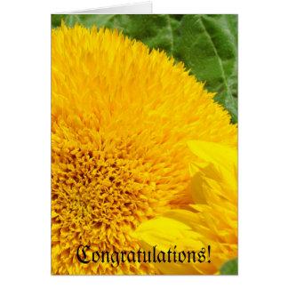 Congratulations! greeting Cards Summer Sunflowers