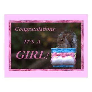 Congratulations… It's A Girl! Postcard