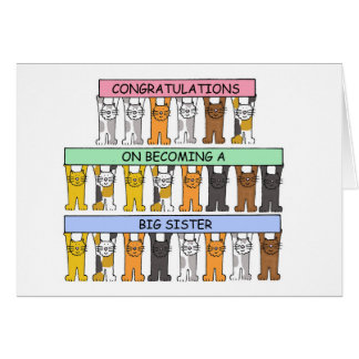 Congratulations on becoming a big sister. card