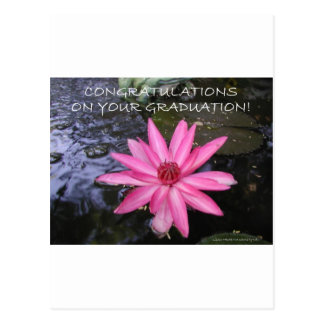 CONGRATULATIONS ON YOUR GRADUATION POSTCARD