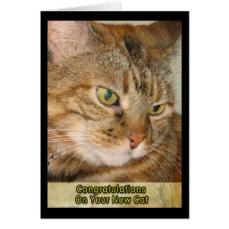 Congratulations on your New Cat Card