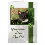 Congratulations on Your New Cat Greeting Card
