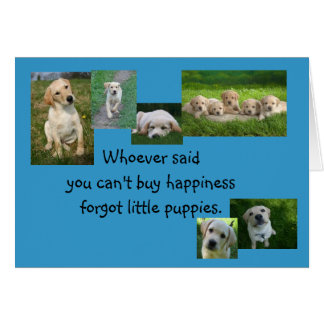 Congratulations on your new puppy! greeting card