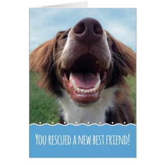 Congratulations on Your New Rescue Dog, Happy Pup Card
