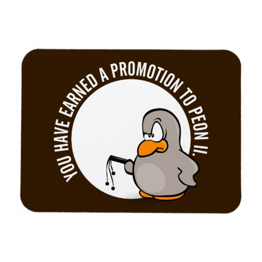 Congratulations on your well earned promotion vinyl magnets