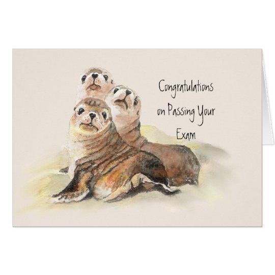 Congratulations Passing Your Exam Humor Cute Seals Card