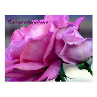 Congratulations_ Postcard