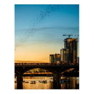 Congress Avenue Bridge Bat Watching Postcard