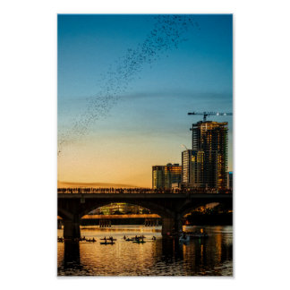 Congress Avenue Bridge Bat Watching Poster