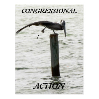 Congressional Action Postcard