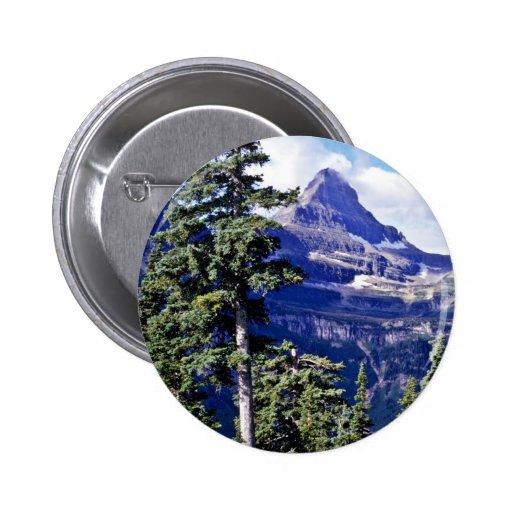 Conifer Trees - Glacier National Park Pins