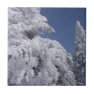 Conifer trees plastered with snow ceramic tile