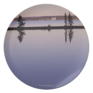 Conifer Trees, Yellowstone Lake Dinner Plate