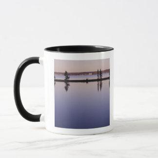 Conifer Trees, Yellowstone Lake Mug