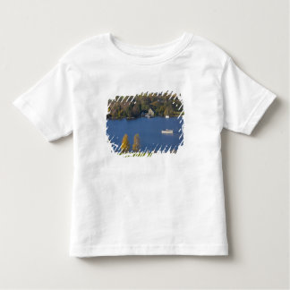 Coniston Water, Lake District, Cumbria, England Toddler T-shirt