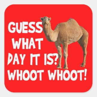 Conjetura del camello del día de chepa qué día es pegatina cuadrada