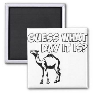 ¿Conjetura qué día es? Camello del día de chepa Imanes Para Frigoríficos