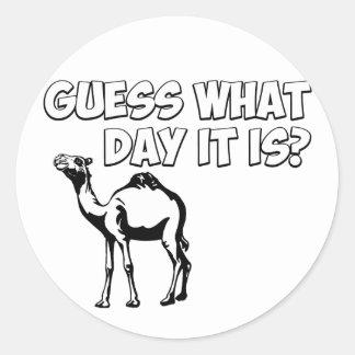 ¿Conjetura qué día es? Camello del día de chepa Pegatina Redonda