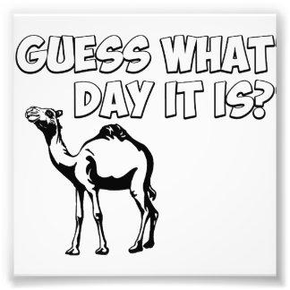 ¿Conjetura qué día es? Camello del día de chepa Impresión Fotográfica