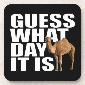 Conjetura qué día es camello del día de chepa posavasos de bebida